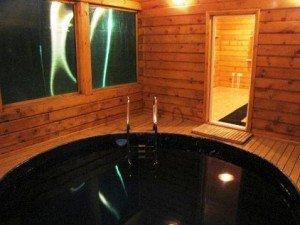 Бассейн внутри деревянной парильни